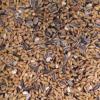 wild bird seed