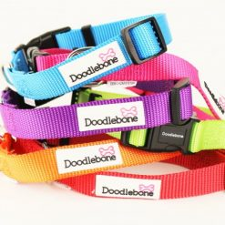 Collars, Leads & Muzzles