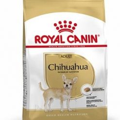 Chihuahua dog food