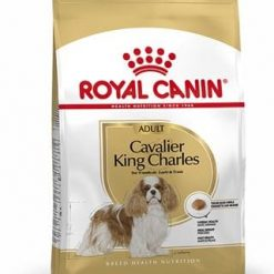 Cavalier dog food