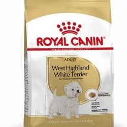 West Highland terrier dog food