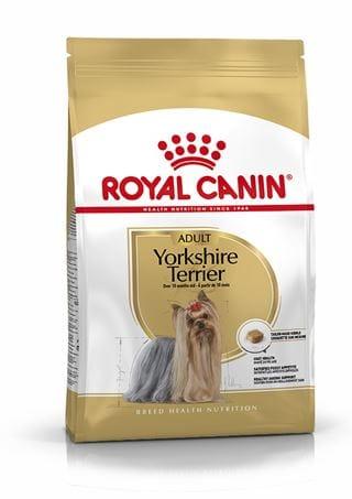 Yorkshire terrier dry food