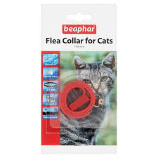 flea collar cat