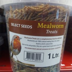 dried mealworms robin