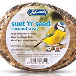 coconut half bird feed